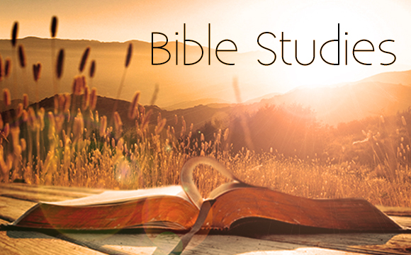 Created for Community - Topical Studies - Bible Study Tools